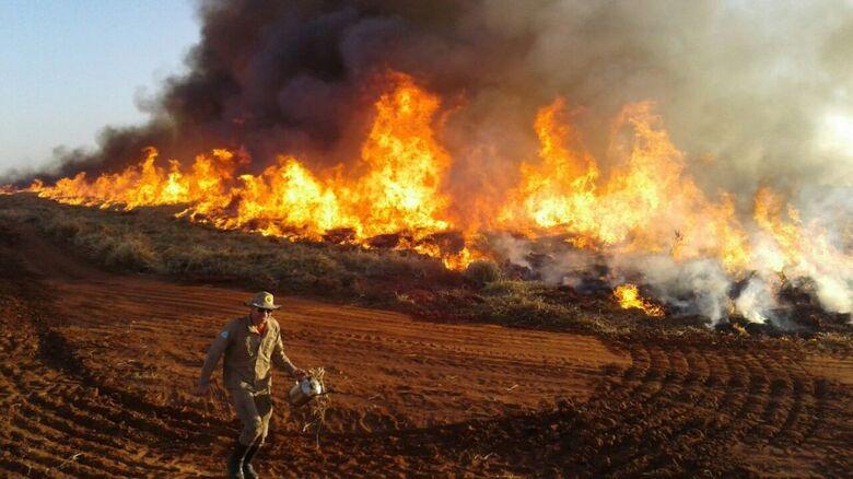 Bombeiros ampliam combate a incêndios florestais em MS - Crédito: Divulgação