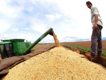 Valor de produção agrícola de 2018 bate recorde, com R$ 343,5 bilhões - Crédito: EBC