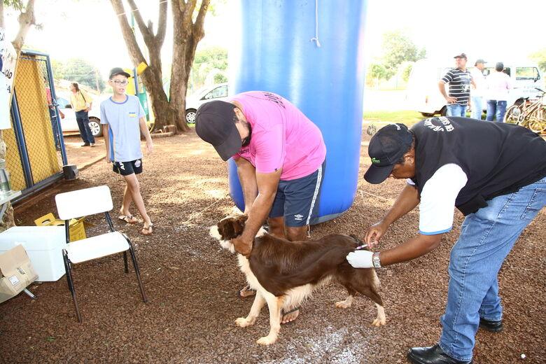Já vacinou seu pet contra a Raiva? CCZ divulga cronograma dos bairros - Crédito: Divulgação