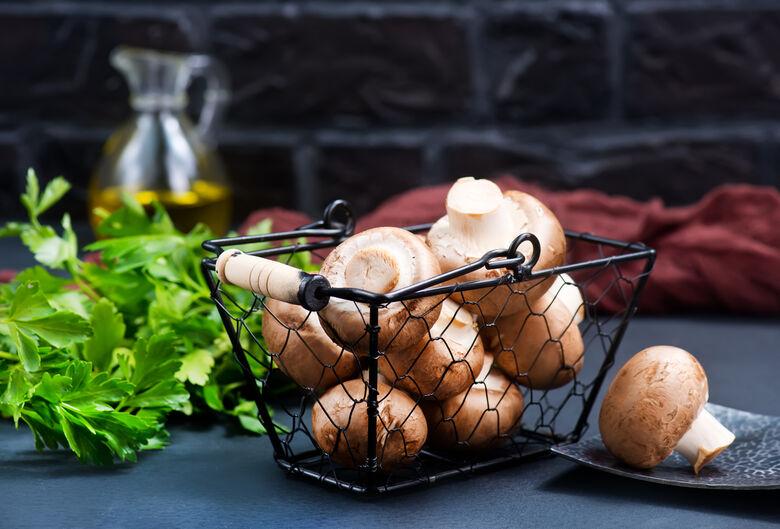 Cogumelos - Crédito: banco de imagem