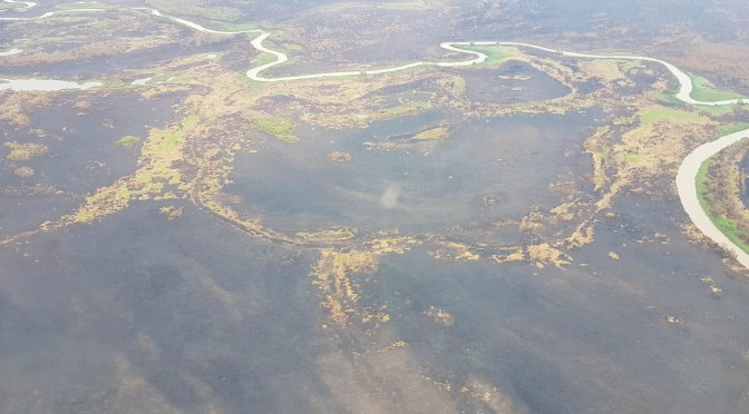 Após 23 dias de combate, incêndio é controlado no Pantanal - Crédito: Defesa Civil