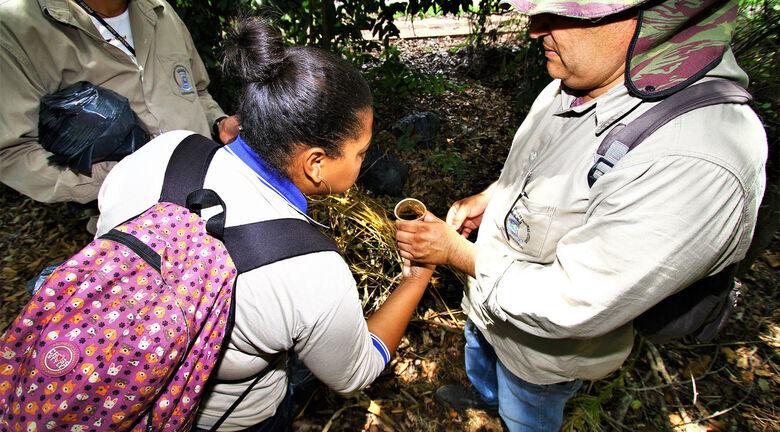 Secretaria de Saúde auxilia municípios no combate a dengue em Mato Grosso do Sul - Crédito: Saul Schramm