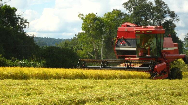 Estiagem afeta a produção no Rio Grande do Sul -