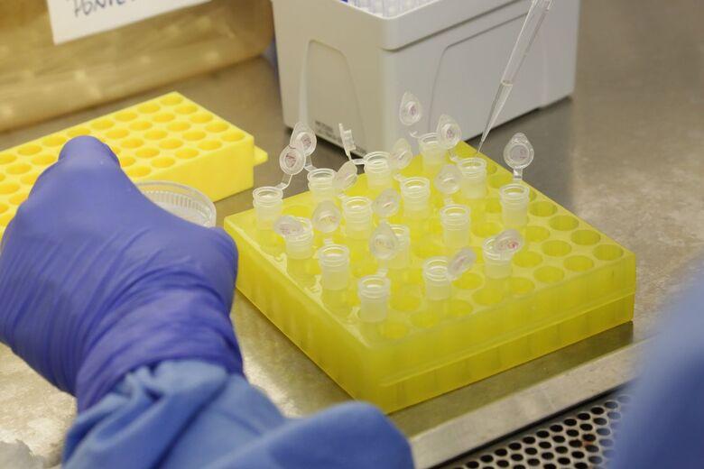Brasil capacita nove países para diagnóstico do novo coronavírus - Crédito: Divulgação/Josué Damacena (IO