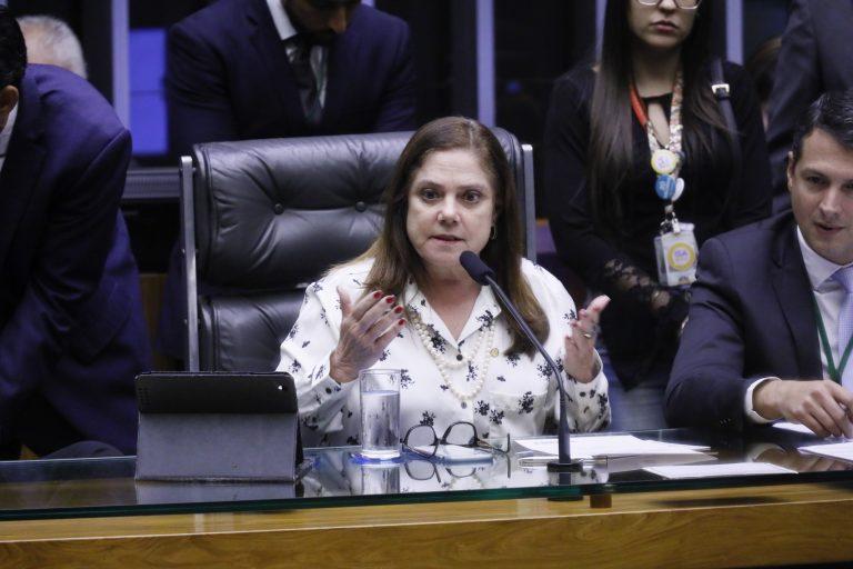Soraya Santos: a comissão vai trazer indicadores sobre violência obstétrica no País - Crédito: Luis Macedo/Câmara dos Deputados