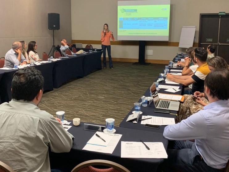 Fundação de Turismo de MS apresenta planejamento de mercado 2020 para Conselho Estadual - Crédito: Divulgação