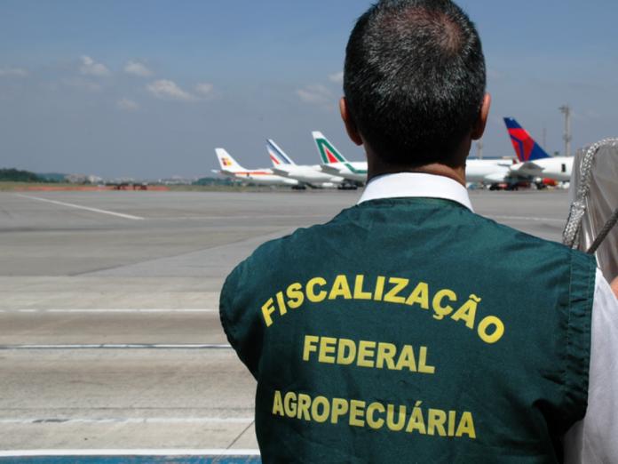 Novo processo vai desburocratizar importação em portos, aeroportos e fronteiras - Crédito: imprensa@agricultura.gov.br
