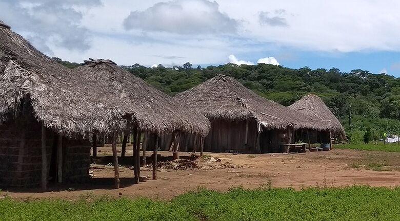 Contra Covid-19, IBGE antecipa dados sobre indígenas e quilombolas - Crédito: Fernando Damasco/IBGE