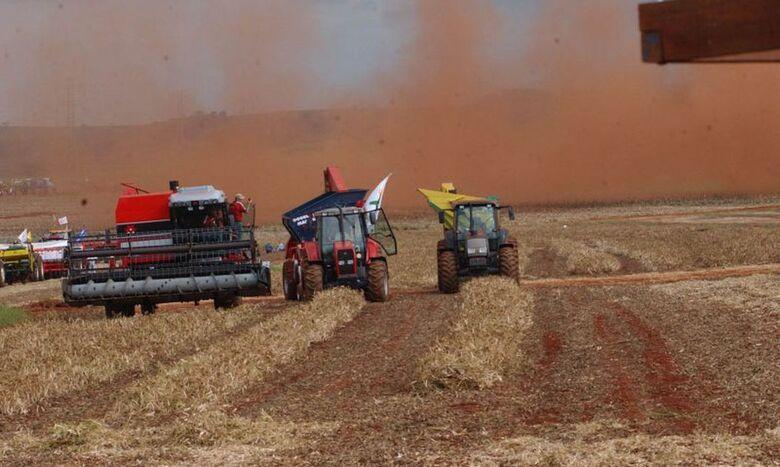 IBGE estima alta de 1,5% na safra de grãos deste ano - Crédito: Arquivo/Agência Brasil