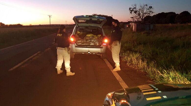 PRF apreende 381,6 Kg de maconha e skunk após tentativa de fuga em Sidrolândia - Crédito: Divulgação