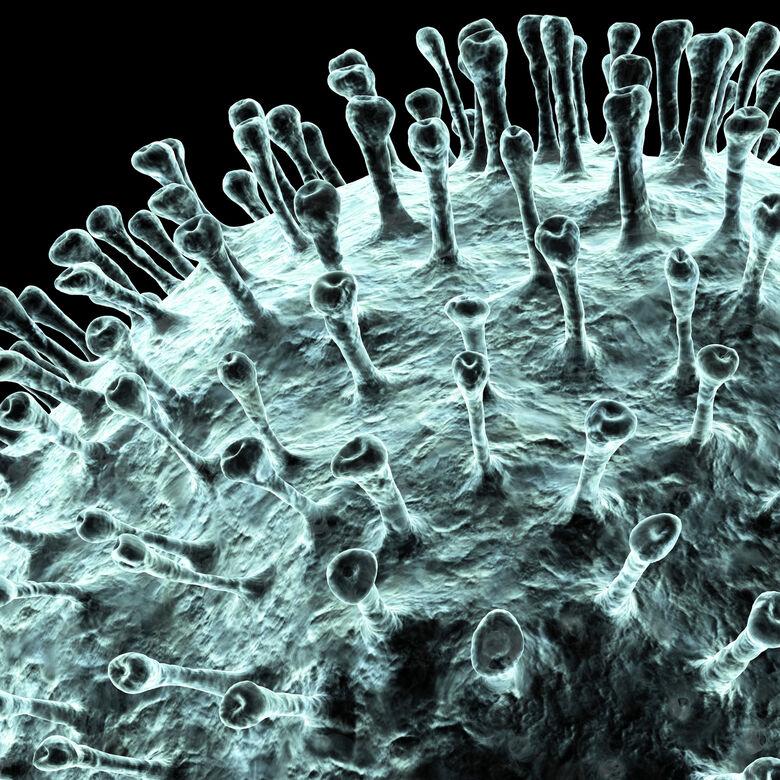 Quiz sobre o novo coronavírus pode ajudar a tirar dúvidas da população -