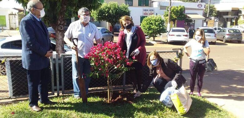 Em memória de médico que morreu de Covid-19, árvore florida é plantada em praça do HV -