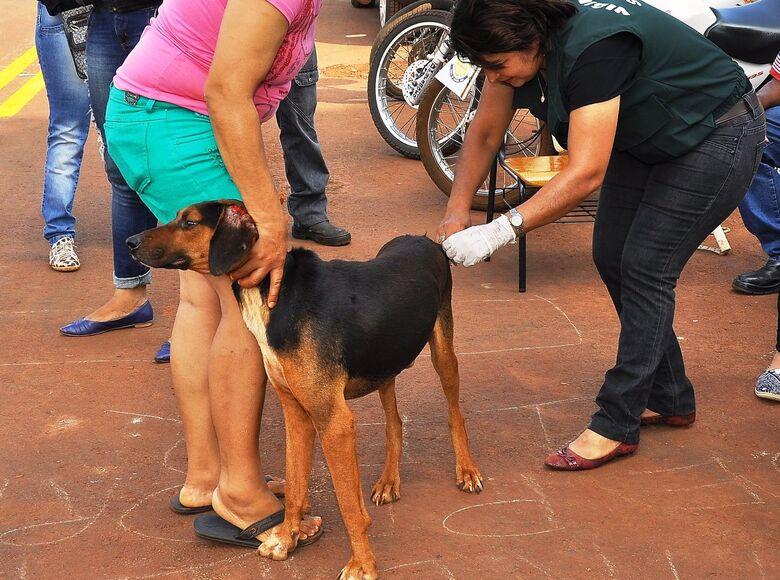 CCZ segue com vacinação antirrábica sábado na Seleta e escola Aurora -