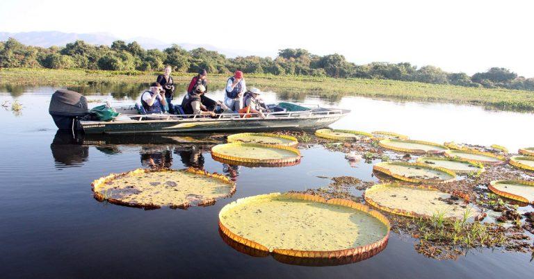 Turismo do MS participa de evento internacional e primeiro totalmente online - Crédito: Flávio André (MTur)