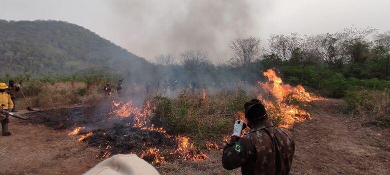 Pantanal pode levar até 50 anos para se recuperar de queimadas - Crédito: Divulgação