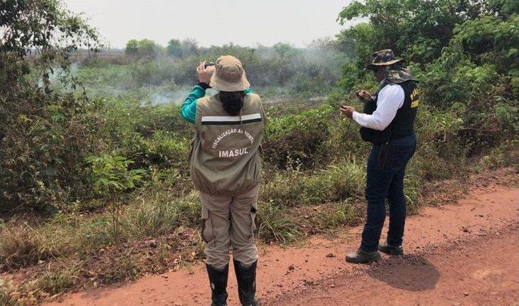 Fazendeiros serão autuados por crime ambiental no Pantanal -