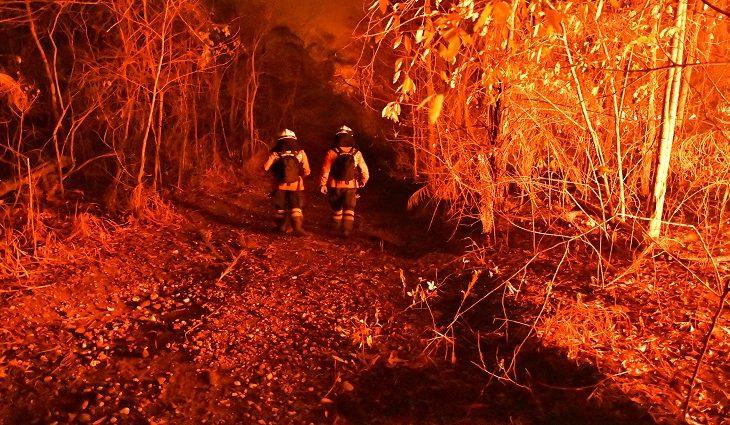Bombeiros superam cansaço, calor e dificuldades de acesso para controlar incêndios no Amolar - Crédito: André Zumak/IHP