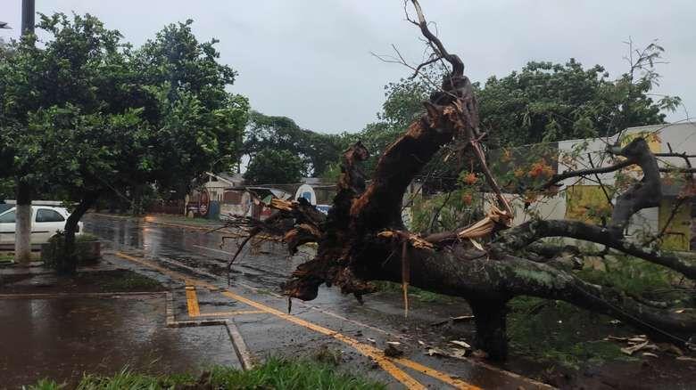 Prefeitura decreta situação de emergência após temporal -