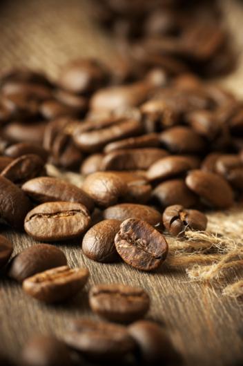 Produção mundial de café no ano cafeeiro 2019-2020 está estimada em 169,34 milhões de sacas de 60kg -