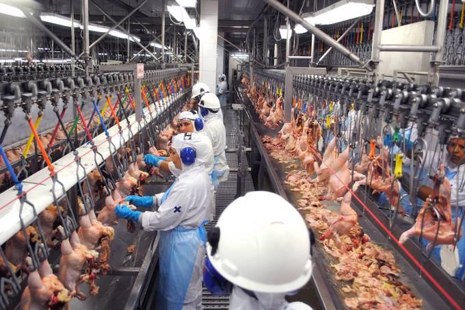 BRF de Dourados tem aval para retomar exportações de frango à China - Crédito: MPT-RS/Divulgação