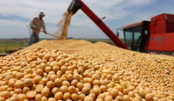 Com destaque para soja e açúcar, exportações de MS somam US$ 5,4 bilhões de janeiro a novembro -
